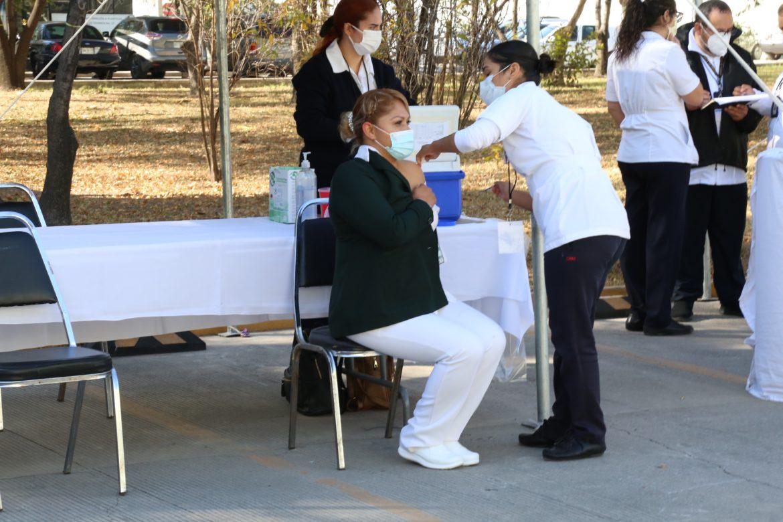 Llama Canaco a vacunarse